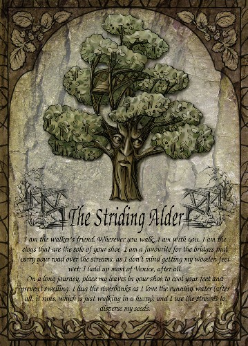 The Striding Alder greetings card