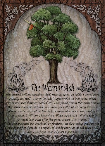 The Warrior Ash greetings card