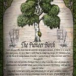 The Pioneer Birch greetings card