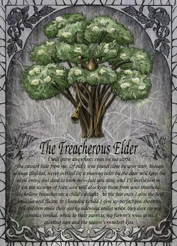 The Treacherous Elder greetings card