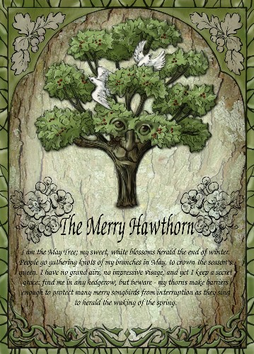 The Merry Hawthorn greetings card