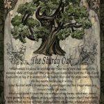 The Sturdy Oak greetings card