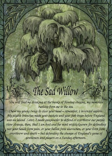The Sad Willow greetings card